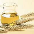Buğday Tohumu Yağı Faydaları