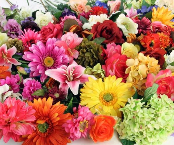 Hangi çiçek Hangi Mevsimde Açar Onikibilgicom