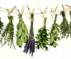 Damar tıkanıklığı için şifalı bitkiler
