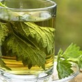 Isırgan Çayının Faydaları Nelerdir?