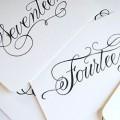 Kaligrafi Sanatını Nasıl Öğrenebilirim?