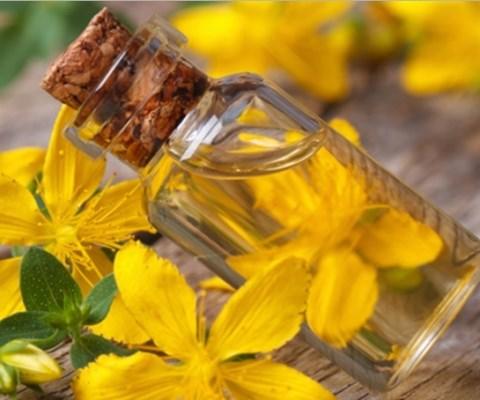 Sarı Kantaron Yağı Nasıl Yapılır Faydaları Nelerdir Onikibilgicom