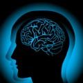 Stres Beyni Nasıl Etkiler?